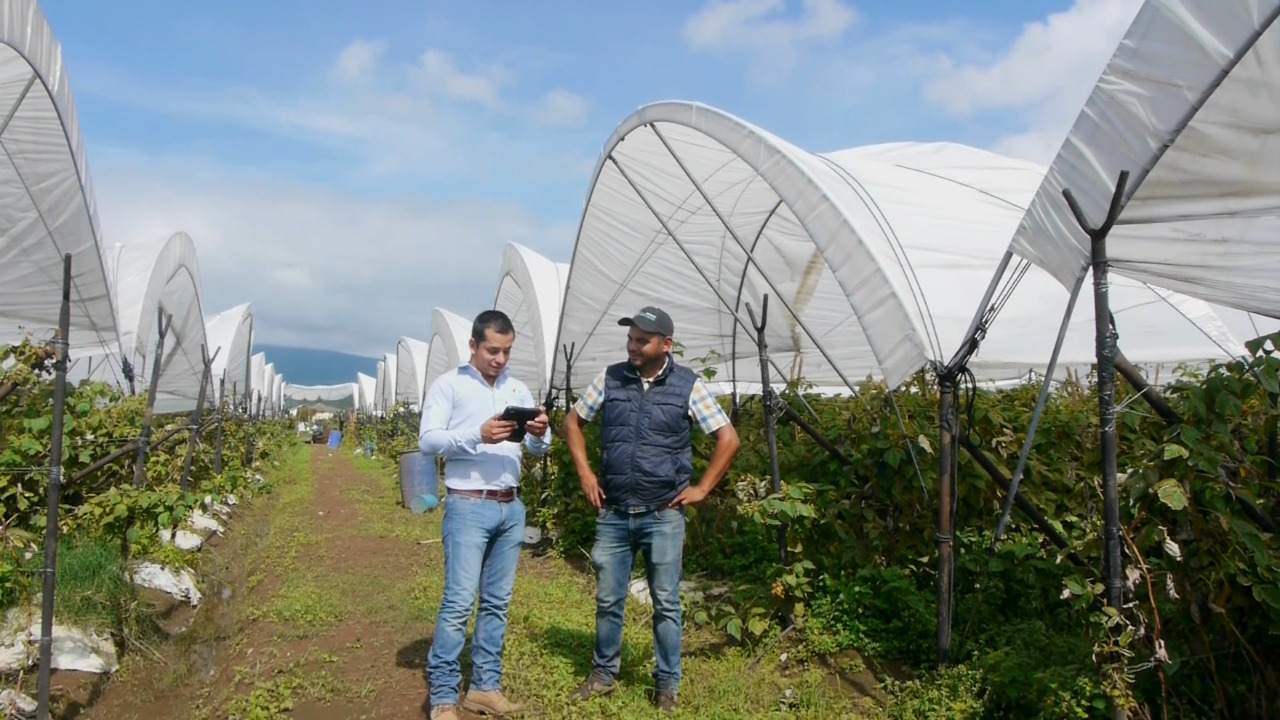 Nuestra empresa ha trabajado en los más variados terrenos, zonas y condiciones climáticas, acumulando interesante conocimientos en estos años.